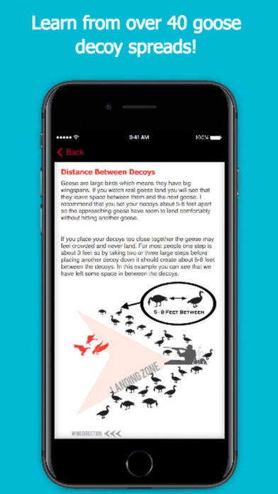 Goose Hunting Diagrams – DecoyPro