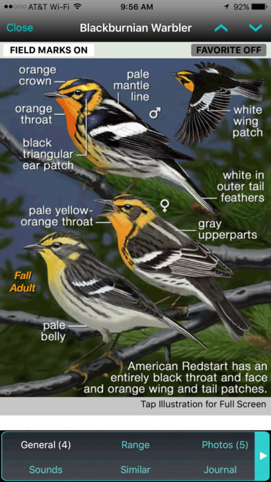 iBird Ultimate Guide to Birds
