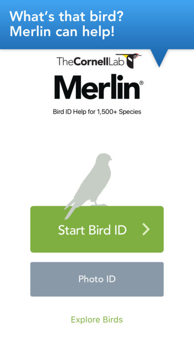 Merlin Bird ID by Cornell Lab